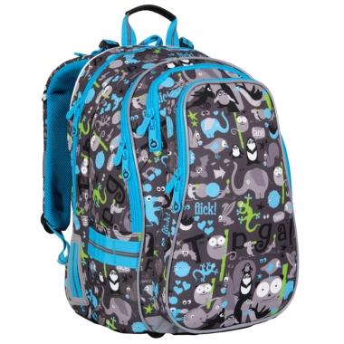 Школьный рюкзак CHI 701 C