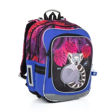 Школьный рюкзак CHI 792 I