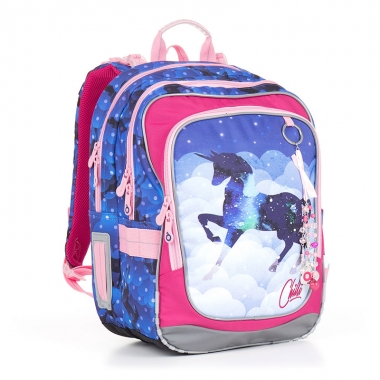 Школьный рюкзак CHI 843 D