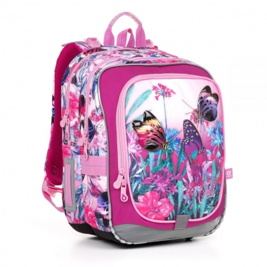 Школьный рюкзак ENDY 17004 G