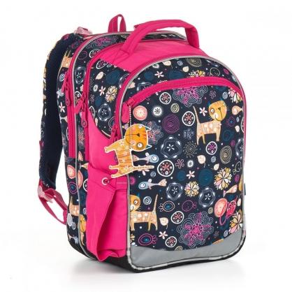 Школьный рюкзак CHI 876 D