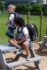 Школьный рюкзак CHI 797 A с доставкой