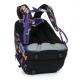 Школьный рюкзак CODA 19006 G интернет-магазин