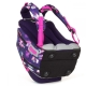 Школьный рюкзак LYNN 18009 G цена
