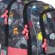 Школьный рюкзак NIKI 19007 G цена